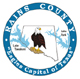 Rains County Logo